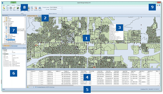 Spatial Manager Desktop™ Layout